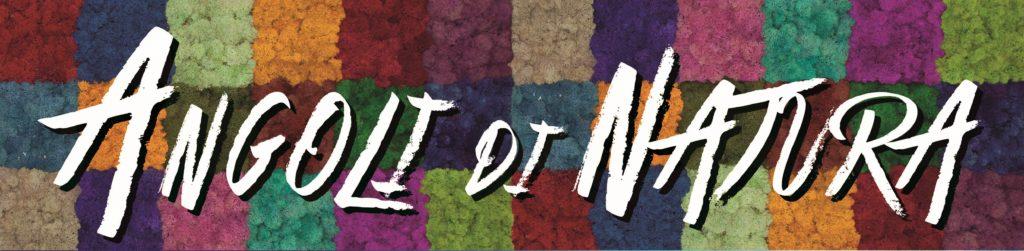 Logo ANGOLI NATURA